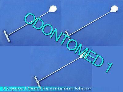 3 Equine Dental Examination Mirror Veterinary Instruments