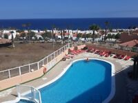 Rent apartment in Tenerife A 1 bedroom for 2 in golf de sur with all amenities near