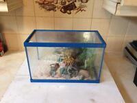 "Fish tank Aquarium 16"" x 10"""