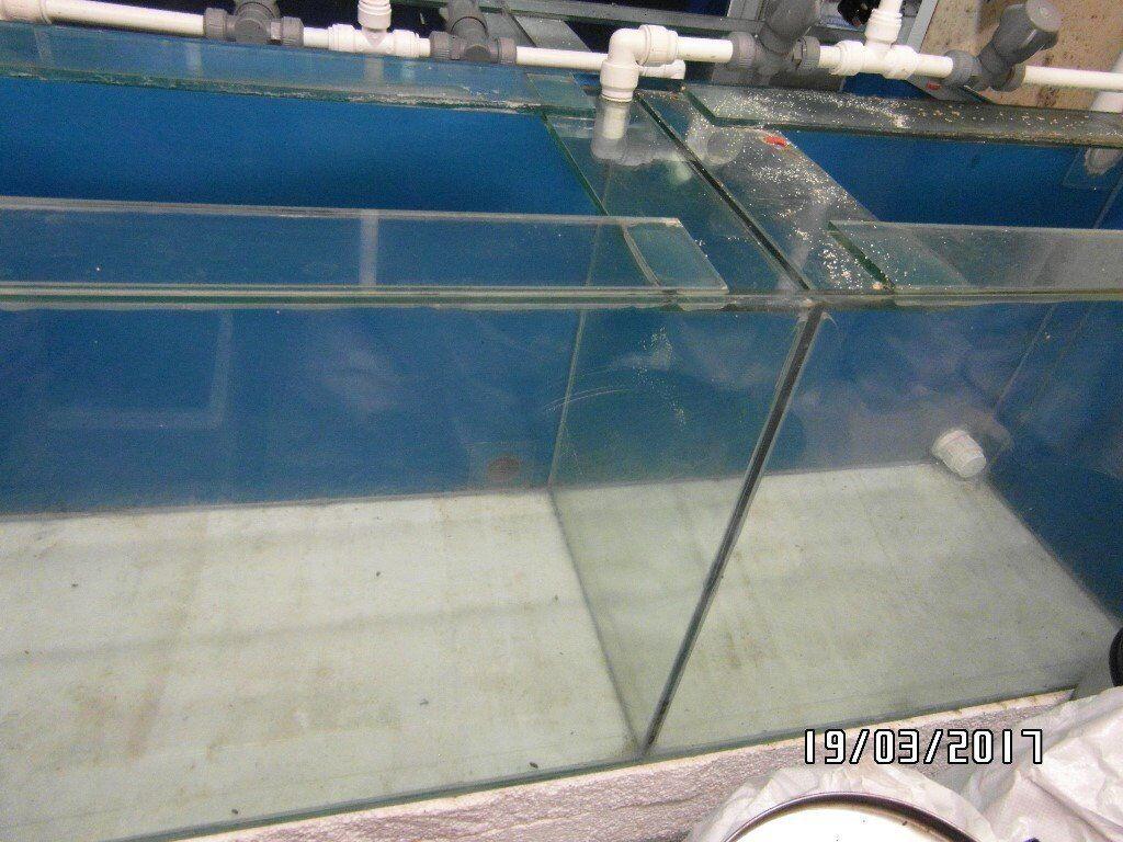 Aquarium fish tank glass lid cover - Tropical Fish Tank Aquarium 5ft X 2ft X 1 5ft Split Into 2 Sections