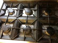 Catering professional oven
