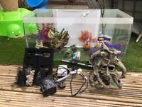 Beautiful tank with led lights and bundle extras