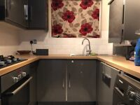 A Fantastic Two Double Bedroom modern Apartment in Leyton Separate Living Room