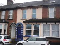 Spacious Two Bedroom Mid-Terrace House
