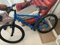 Bike 22 inch frame