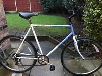 adults raliegh pioneer road bike