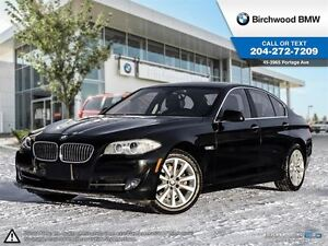 2013 BMW 5 Series 528i xDrive Premium Package