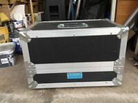 THD Univalve amp and flight case