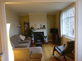 1 Large double room in a Blackheath village flatshare (hhold bills incl)