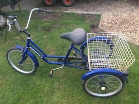 Three wheeled bike for sale