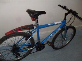 MAN BICYCLE Hybrid
