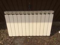 Faral Italian radiator few marks