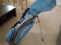 Mizuno golf club set - Callaway golf club bag - Titleist golf balls