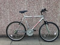 Adults mountain bike for sale