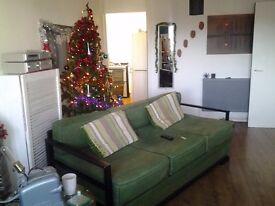 3 setter sofa in black green