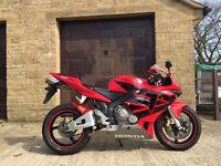 Honda CBR600RR 2003,12 Months MOT, Brand New Clutch, Recent £711 Huge Service!