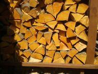Large Cage ( Or Builders Bag ) Of Alder Fire Logs