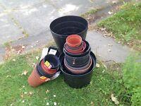 FREE - plastic plant pots