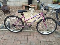 Swap. Bargain Ladies / Girls sabre genie mountain bike - Excellent condition