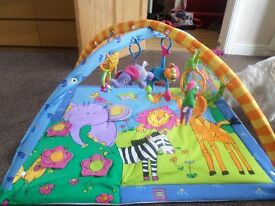 Rainforest Play Gym