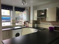2019: 4 BEDROOM HOUSE TO RENT, PEARSON GROVE, HYDE PARK, LEEDS, LS6 1JB