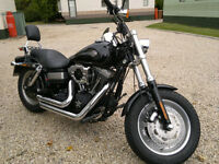 harley davidson fxdf 1585 fat bob 2010 (bike was a cat D damaged) read full add for info