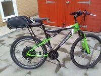 Apollo Gradient electric mountain bike conversion