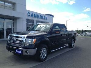 2014 Ford F-150 XTR w/ 302A Package & EcoBoost!