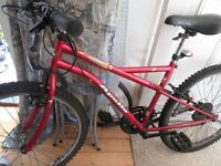 women's mountain bike Apollo