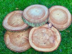 Wedding cake stand table decoration log slices centre pieces rustic natural tree rounds