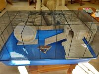 Large hamster cage and accessories for sale - Bankfoot