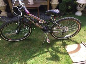 Girls bike Rayleigh