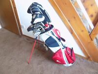 Ping Nike and Titleist Clubs Full Set