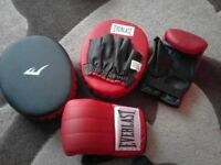 Everlast punch bag