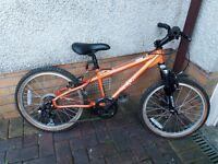 "Boys 20"" Schwiin mountain bike"