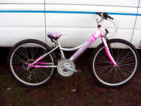 """girls 24"""" wheel mountain pink/silver bike serviced and ready to ride"""