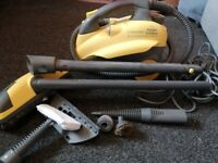 Electrolux Steam Cleaner