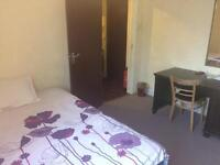 Nice double room and a single in Wood Green
