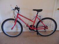 "Raleigh Spritz 18.5"" Mountain Bike"