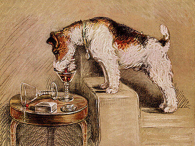 WIRE FOX TERRIER CHARMING DOG GREETINGS NOTE CARD CUTE DOG DRINKS FROM GLASS