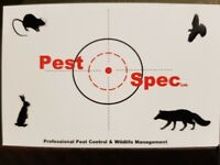 Professional Pest Control, rats, mice, birds, insects, bedbugs, wasps, moles, rabbits, squirrels etc