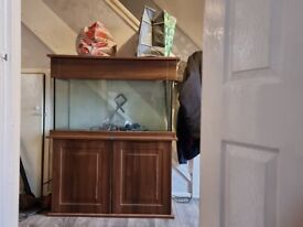 3 ft fish tank and accessories back up due to time wasters