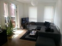 Friendly flat share in a new flat in East London Stratford Canning Town Plaistow E13 E14 E15 Newham