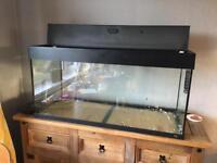 Juwel 180 fish tank aquarium