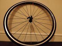 Colnago Road Bike Wheelset - Unused - Shimano fit - SOLD