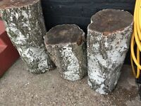 Tree stumps or fire wood FREE