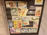 stamp collection BARGAIN £10