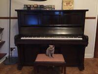 1920s mahogany Steck piano pianola with rolls.