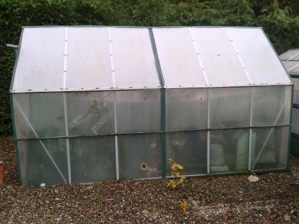 12x6 safety glass greenhouse