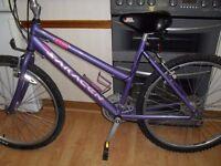 Ladies Mountain bike Saracen Diva